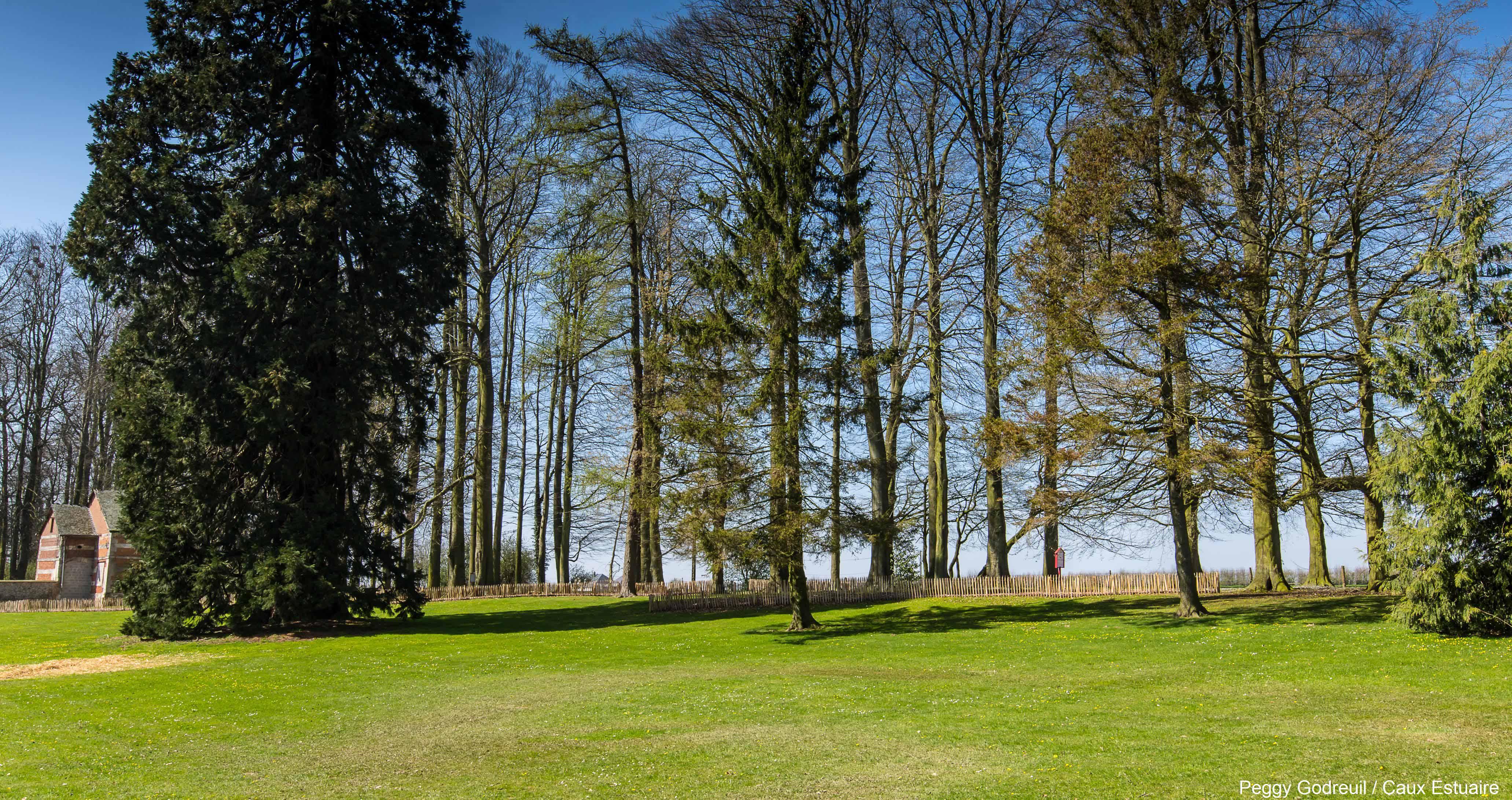 Parc de Gromesnil © P.Godreuil