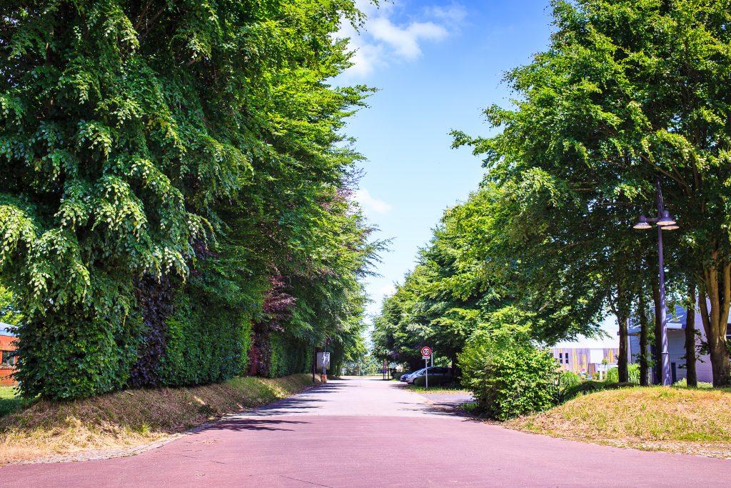 Voirie Parc Éco-Normandie